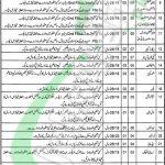 DHQ Hospital Sahiwal Jobs