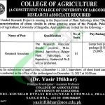 Sargodha University Jobs