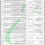 Health Department Bahawalpur Jobs
