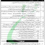 NUML Islamabad Jobs