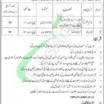 District Education Authority Jhelum Jobs