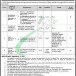 Sindh Public Sector Health Institute Jobs