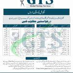 GTS Jobs