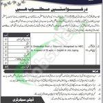 Local Government and Rural Development AJK Jobs