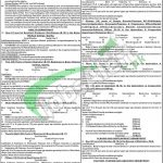 www bpsc gob pk Jobs Advertisement No 08/2017 Online Apply