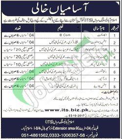 Islamabad Testing Service Jobs