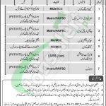 Jobs in Bait Ul Maal Punjab