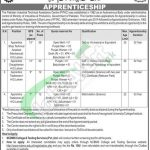 PITAC Apprenticeship
