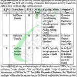 PO Box 777 Peshawar KP Jobs 2018