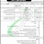 Sindh Rangers Jobs
