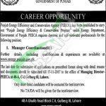 PEECA Jobs