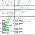 Food Department Punjab Jobs