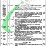 Communication and Works Department Punjab Jobs