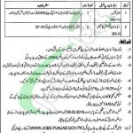 Excise and Taxation Lahore Jobs 2019