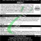 PPDCL Punjab Jobs