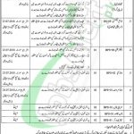 Government Said Mitha Teaching Hospital Lahore Jobs
