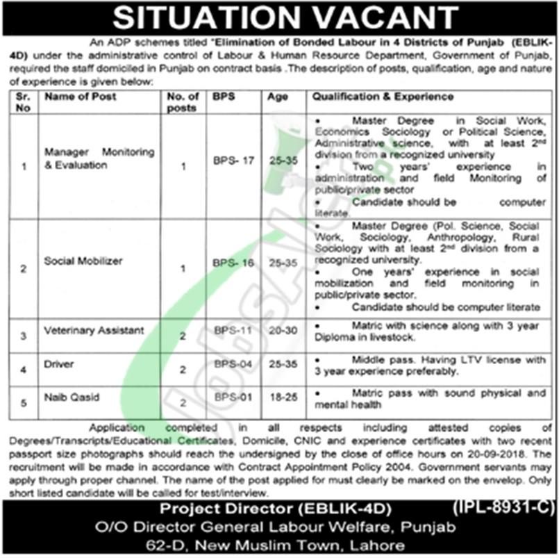 Labour Welfare Department Punjab Jobs
