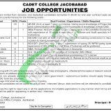 Cadet College Jacobabad Jobs 2020