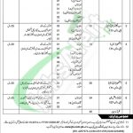 PWD Department Jobs