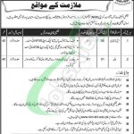NIM Karachi Jobs 2019