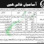 Military College Sui Jobs