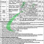 Healthcare Department Punjab Jobs