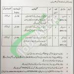 Auqaf Department KPK Jobs