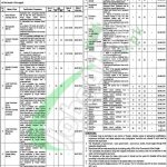 Mental Hospital Lahore Jobs 2018
