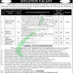District and Session Court Zilla Qazi Swat Jobs 2018