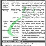 Bahria College Karsaz Jobs