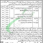 KPK Government Jobs