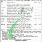 Finance Department KPK Jobs 2019
