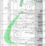 PO Box 750 Rawalpindi Jobs