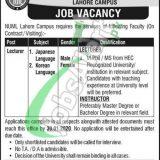 NUML Jobs