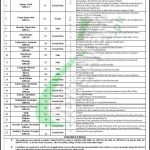 Govt Sadiq College University Bahawalpur Jobs 2018