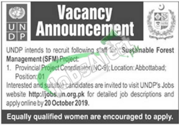 UNDP Jobs 2019