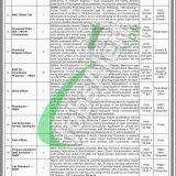 TB Control Program Sindh Jobs 2019