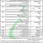 Health Department Rawalpindi Jobs 2019