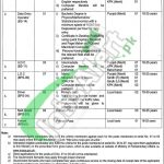 Ministry of Parliamentary Affairs Jobs