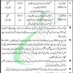 District and Session Court Jacobabad Jobs 2019