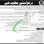 PO Box 374 Rawalpindi Jobs