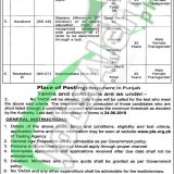 Punjab Revenue Authority Jobs 2019 Application Form Download | pts