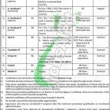 PO Box 71 Karachi Jobs