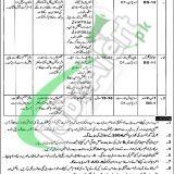 Forest Department Multan Jobs