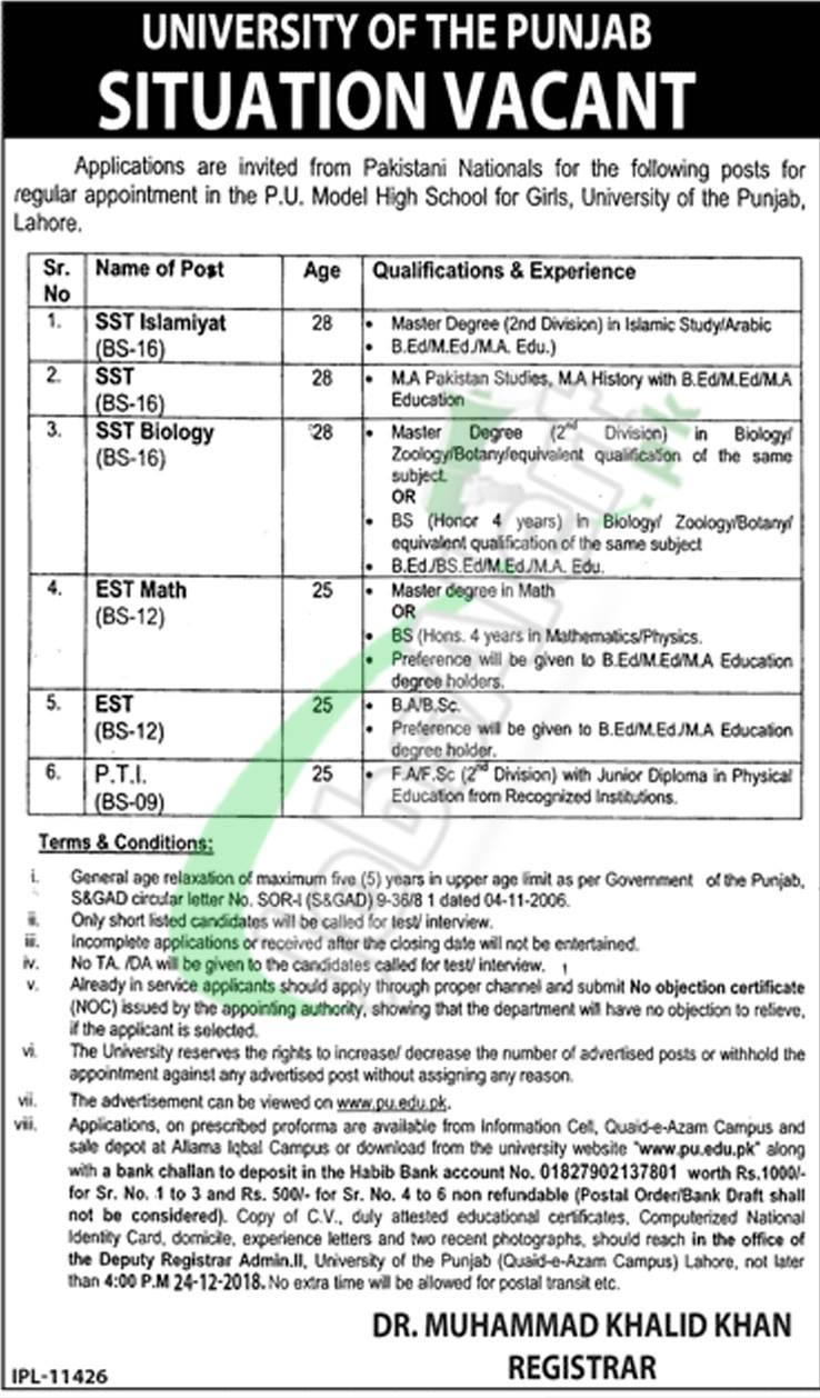 Punjab University Jobs 2018