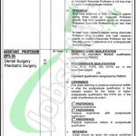 Shaikh Zayed Hospital Lahore Jobs
