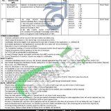C&W Department KPK Jobs