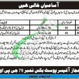 KPK Government Jobs 2019