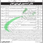District and Session Court Shaheed Benazirabad Jobs