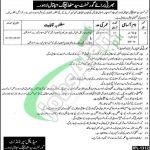 Syed Mitha Teaching Hospital Lahore Jobs